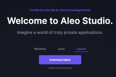 Aleo Studio Website Preview